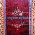 TORAH STUDY LESSONS. Introduction