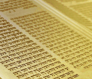 torah why we have