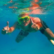 Snorkel or scuba in the Red Sea, Eilat
