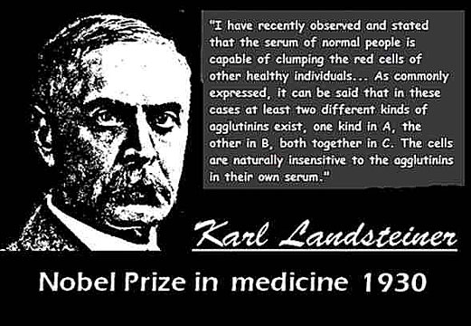 KARL LANDSTEINER CLICK TO ENLARGE